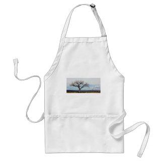 孤独な木-ニューメキシコ。 スタンダードエプロン