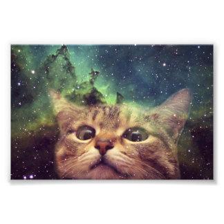 宇宙に凝視している猫 フォトプリント
