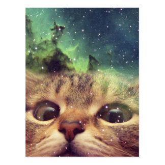 宇宙に凝視している猫 葉書き