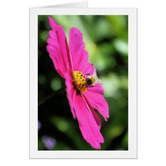 宇宙の蜂蜜の蜂 カード