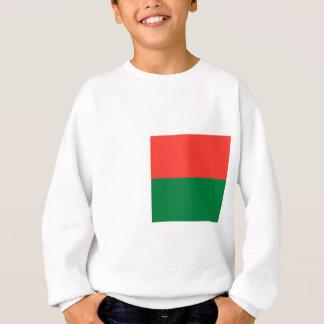 安価! マダガスカルの旗 スウェットシャツ