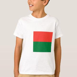 安価! マダガスカルの旗 Tシャツ