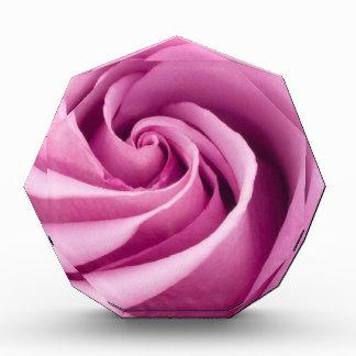 完全さ賞に折られるピンクのバラ 表彰盾
