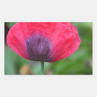 完全なケシの花 長方形シール