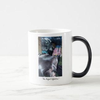 完全な反射-神/犬 モーフィングマグカップ