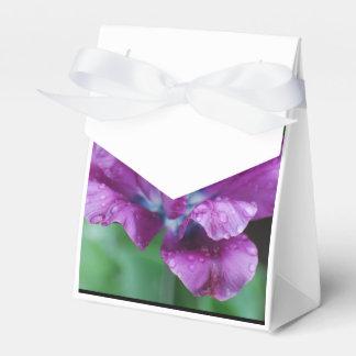 完全に紫色のオウムのチューリップ フェイバーボックス