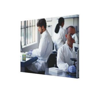 実験室で働いている化学者 キャンバスプリント