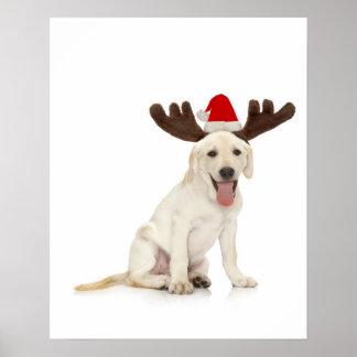 実験室の子犬の身に着けている(雄ジカの)枝角 ポスター