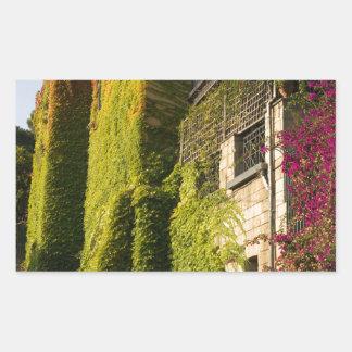 家の壁のカラフルの葉 長方形シール
