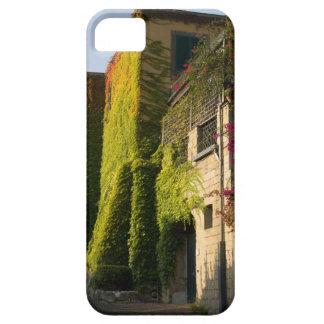 家の壁のカラフルの葉 iPhone SE/5/5s ケース