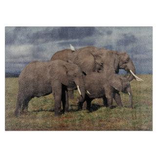 家族を持つ赤ん坊のアフリカゾウ カッティングボード