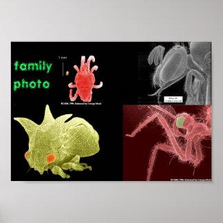 家族写真 ポスター