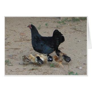家禽家族 カード