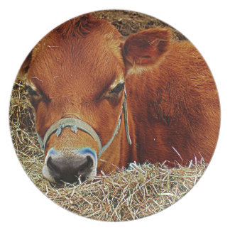 寄り添われた牛 プレート