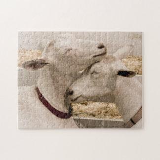 寄添っているヤギ ジグソーパズル
