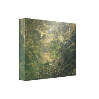 密な森林 キャンバスプリント