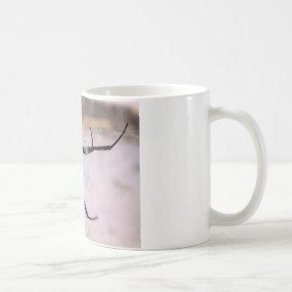 寡婦のくもの巣 コーヒーマグカップ