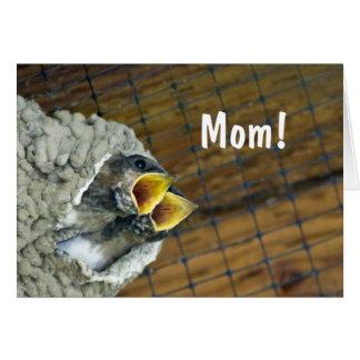 対のひな鳥の母の日カード カード