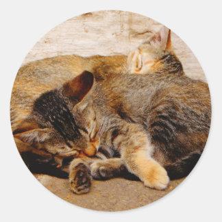対の子ネコ ラウンドシール