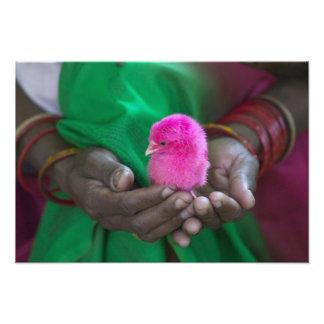 小さいひよこを握っている女性は神聖と絵を描きました フォトプリント