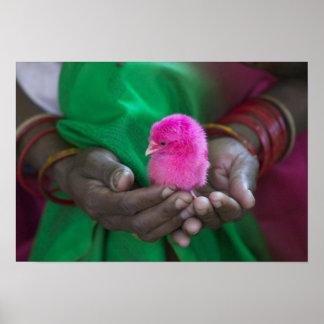 小さいひよこを握っている女性は神聖と絵を描きました ポスター