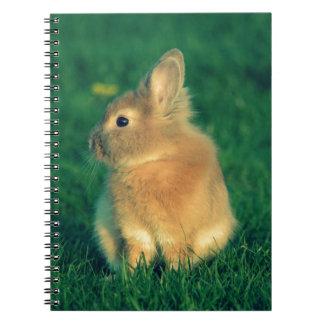小さいウサギ ノートブック