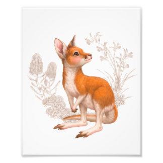 小さいオーストラリアの友人-カンガルー フォトプリント