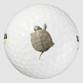 小さいカメ(カメ) ゴルフボール