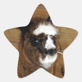 小さいベビーのアルパカ- Vicugnaのpacos 星シール