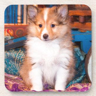 小さいワゴンで坐っているシェットランド・シープドッグの子犬 コースター