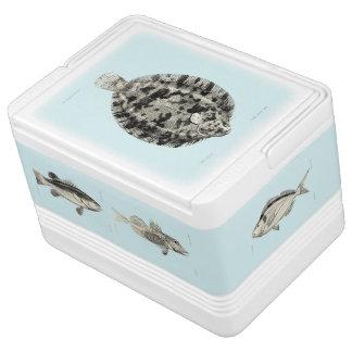 小さいヴィンテージ科学NZの魚 IGLOO クーラーボックス
