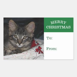 小さい子ネコのカスピ海のメリークリスマスのギフトのステッカー 長方形シール