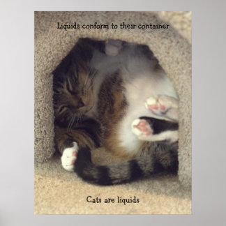 小さい宇宙でカールする猫 ポスター
