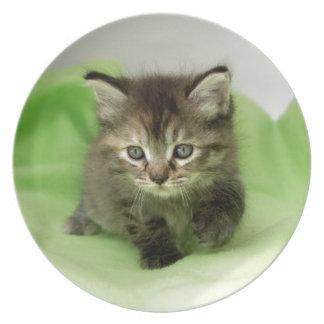 小さい恋人の子ネコか猫のメラミンプレート 皿