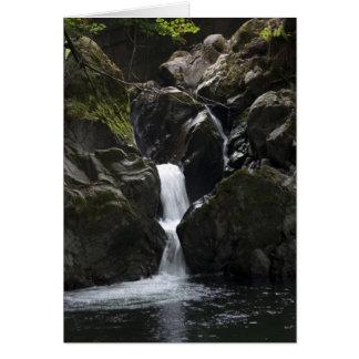 小さい滝 カード