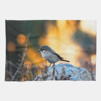 小さい灰色のすずめの鳥 キッチンタオル