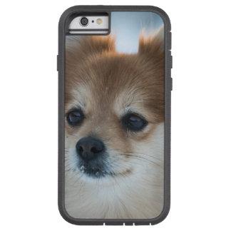 小さい犬のクローズアップ TOUGH XTREME iPhone 6 ケース