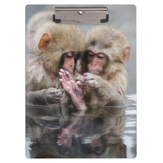 小さい猿| Hot Springs、日本 クリップボード
