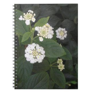 小さい白い花 ノートブック