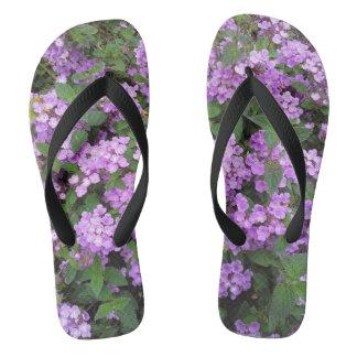 小さい紫色の花 ビーチサンダル
