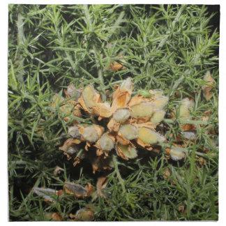小さい緑の昆虫が付いている種のポッド ナプキンクロス