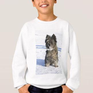 小さい茶色犬は雪のロットが付いている雪に坐ります スウェットシャツ