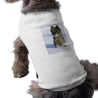 小さい茶色犬は雪のロットが付いている雪に坐ります ペット服