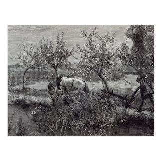 小さい農場の井戸tilled', Picardy ポストカード
