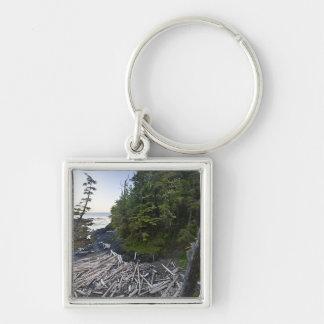 小さい隠遁したビーチで積まれる流木 キーホルダー