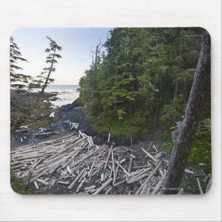 小さい隠遁したビーチで積まれる流木 マウスパッド