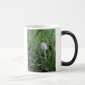 小さい驚異のマグ モーフィングマグカップ