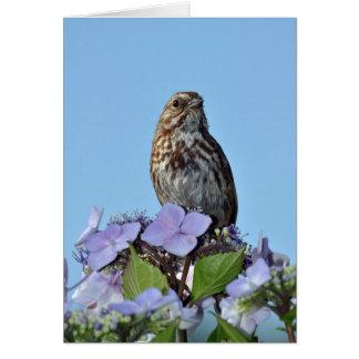 小さい鳴き鳥の挨拶状 カード