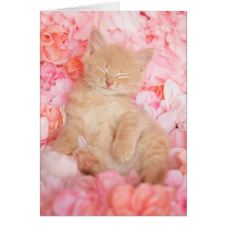 小さいLinusのピンクの花柄のブランクNotecard カード