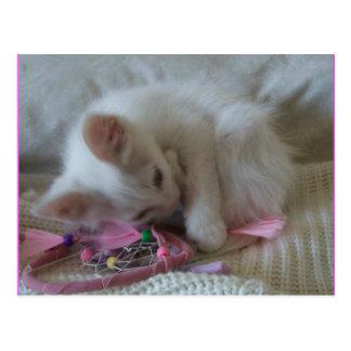 小さな女の子の子猫の郵便はがき#2 ポストカード